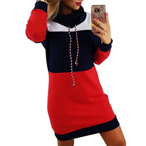 Turtleneck Long Sleeve Hooded Colorful Hoodie Dress