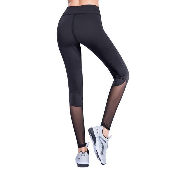 Workout High Waist Skinny Mesh Leggings