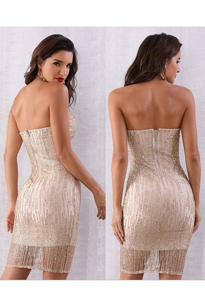 Sexy Sequined Strapless Runway Club Party Mini Dress