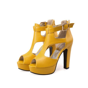 Hot Peep Toe Chunky High Heel Platform Sandals Verkadi.com