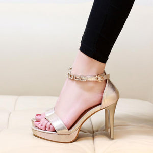Hot Classics Designer High Heel Sandals Verkadi.com
