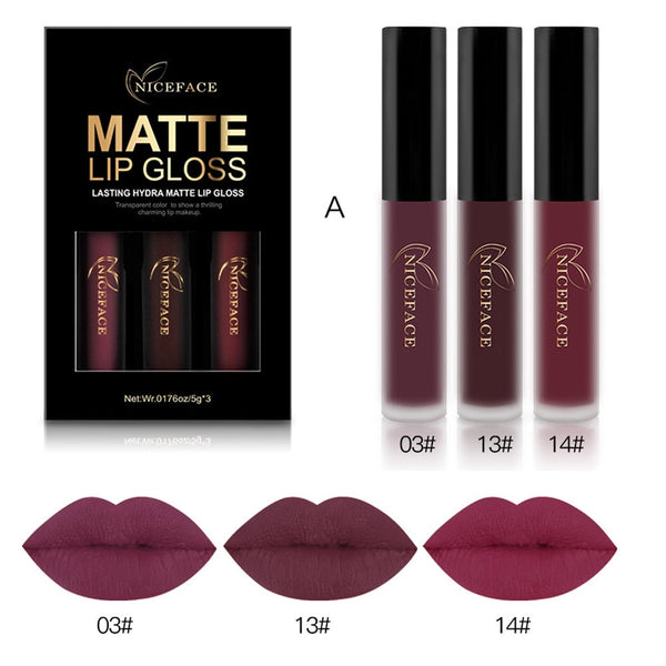 Lip Gloss 3PCS New Fashion Waterproof Matte Liquid Lipstick Cosmetic Sexy Lip Gloss Beauty Kit