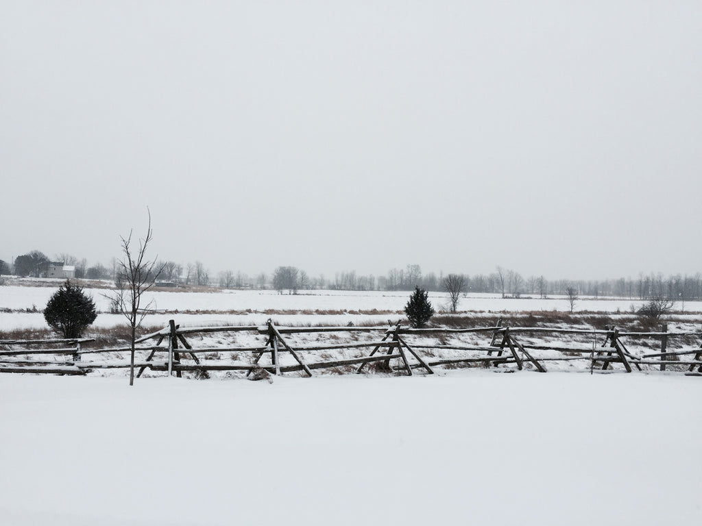 winter scene Canada fence snow
