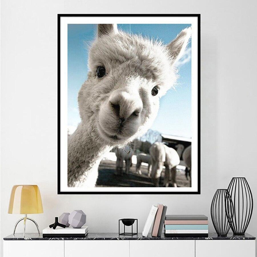 Diamond Painting Alpaca - Hobby-4U