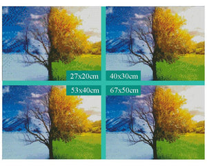 Diamond Painting Boom Winter & Zomer - Hobby-4U