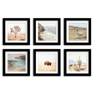 Neutral Nature Photography - 6 Piece Framed Gallery Wall Set