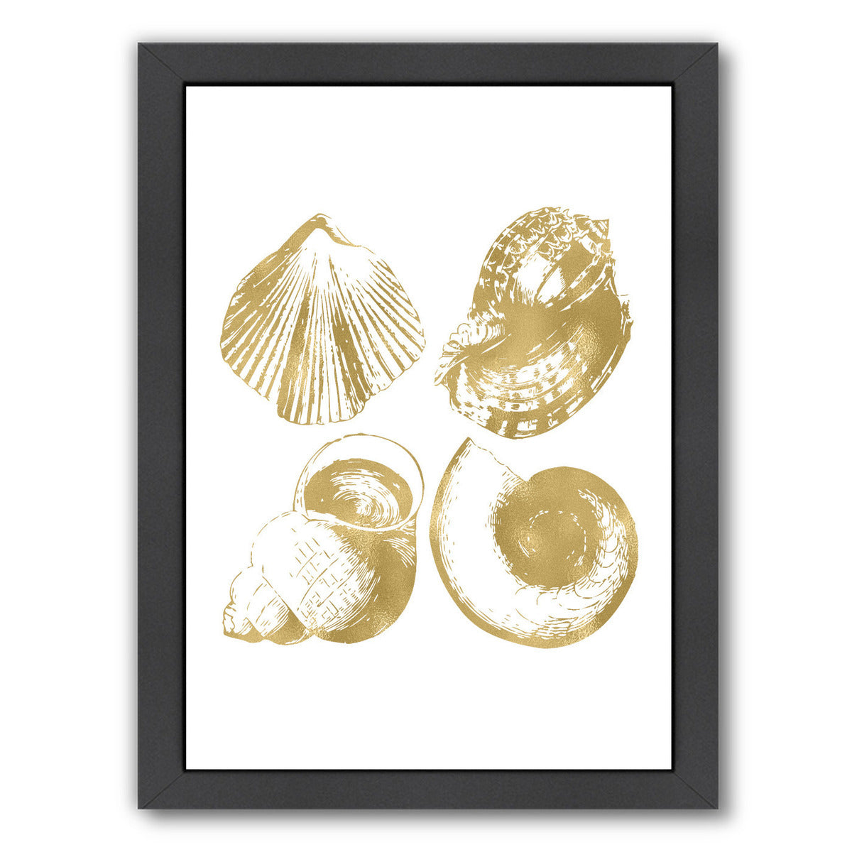 Seashell Quad Gold On White by Amy Brinkman Framed Print - Wall Art - Americanflat