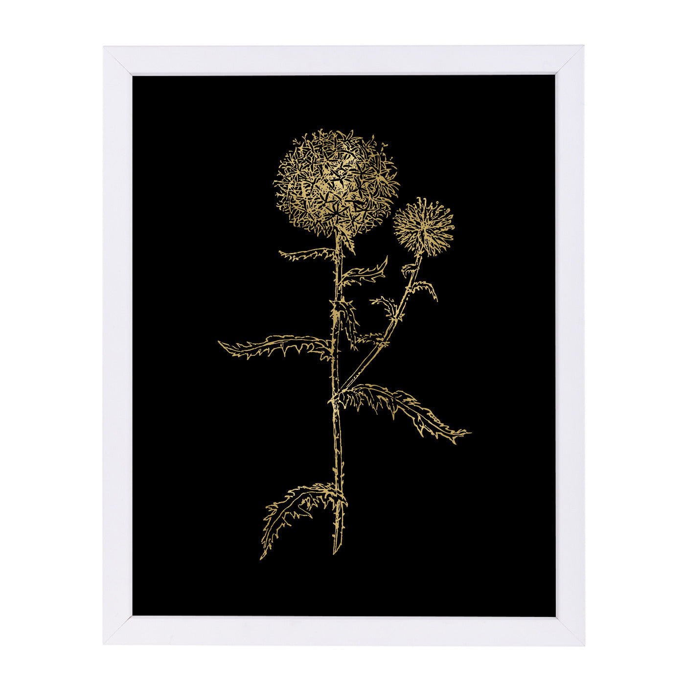Thistle 2 Gold On by Amy Brinkman Framed Print - Wall Art - Americanflat