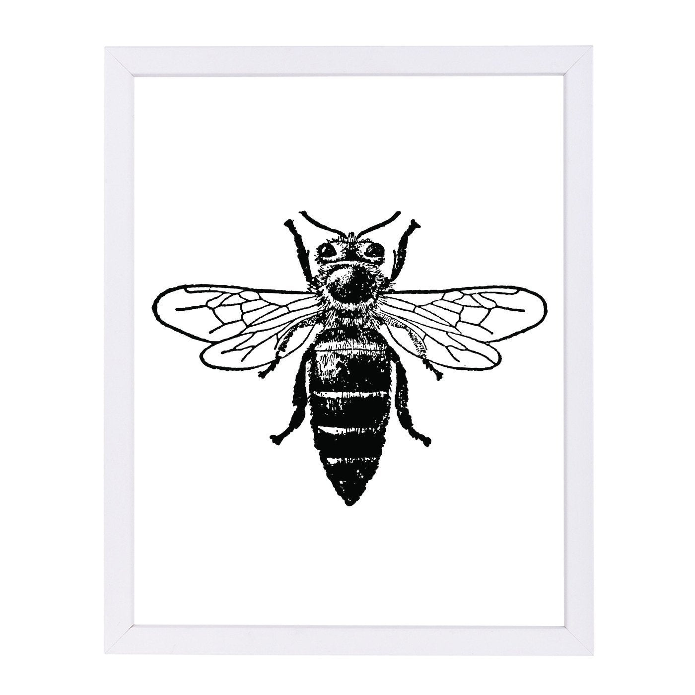 Bumblebee by Amy Brinkman Framed Print - Wall Art - Americanflat
