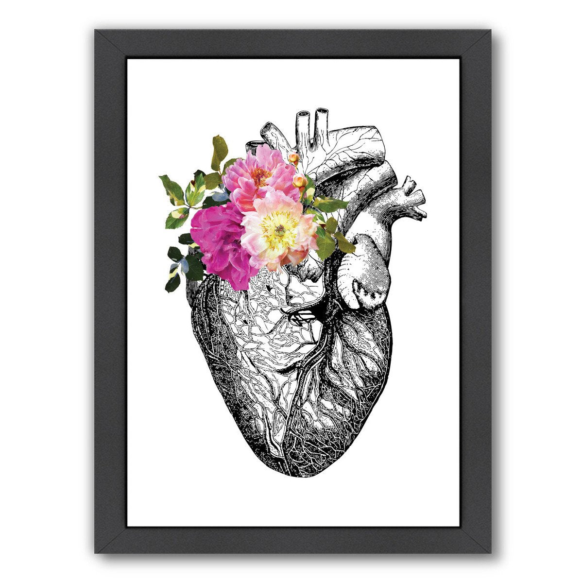 Heart Anatomical Floral by Amy Brinkman Framed Print - Wall Art - Americanflat