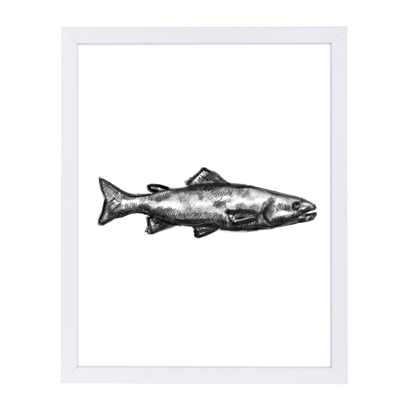 Trout Illustration by Jetty Printables Framed Print - Wall Art - Americanflat