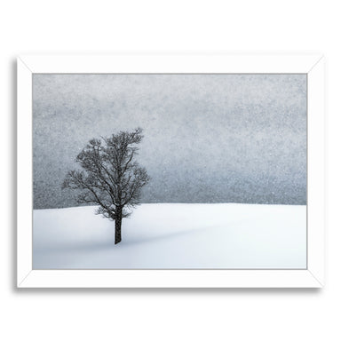 Lonely Tree Idyllic Winter By Melanie Viola White Framed Print - Wall Art - Americanflat