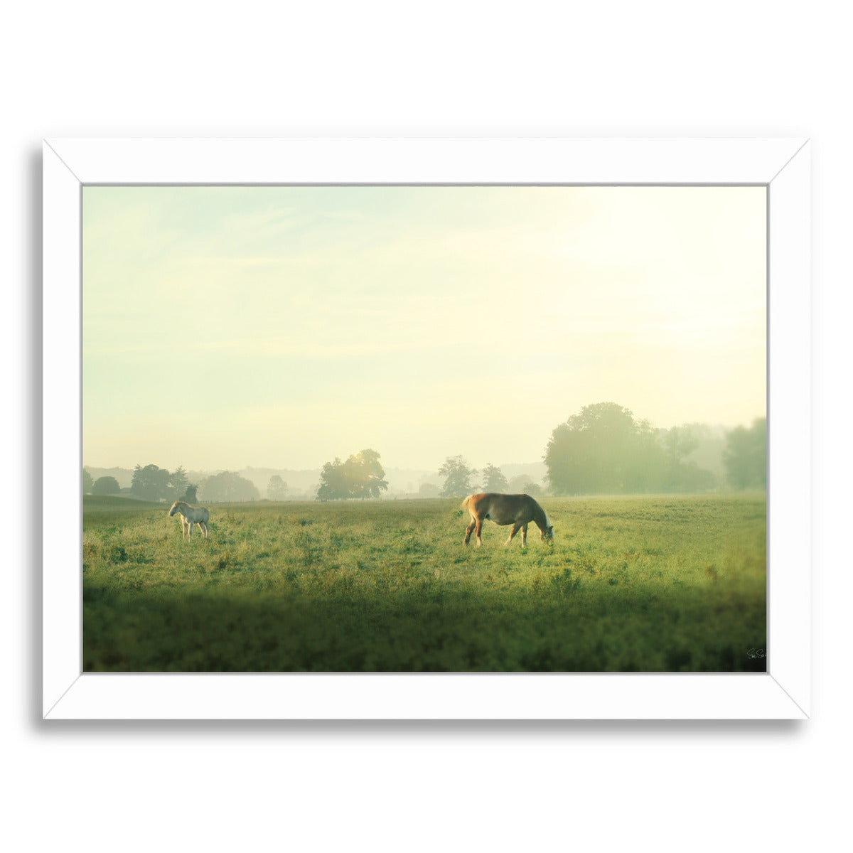 Farm Morning I by Wild Apple Framed Print - Americanflat