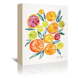 Citrus Slices by Cat Coquillette Wrapped Canvas