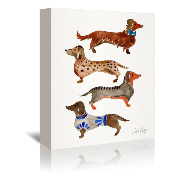 Dachshunds by Cat Coquillette Wrapped Canvas