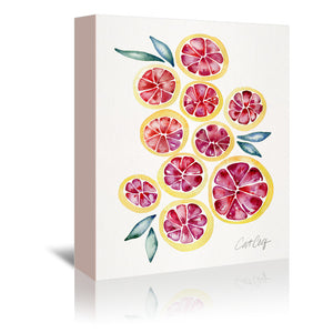 Grape Fruit Slices by Cat Coquillette Wrapped Canvas