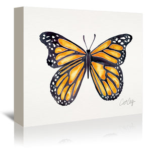 Monarch by Cat Coquillette Wrapped Canvas