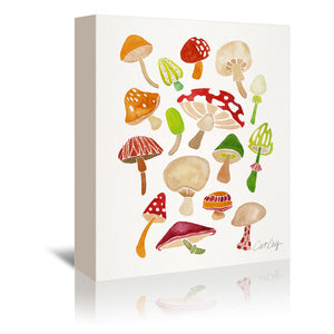 Mushrooms by Cat Coquillette Wrapped Canvas