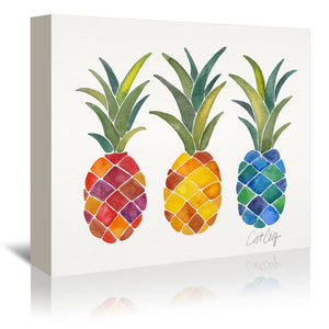 Pine Apples by Cat Coquillette Wrapped Canvas