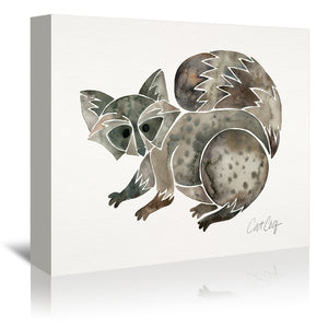 Raccoon by Cat Coquillette Wrapped Canvas