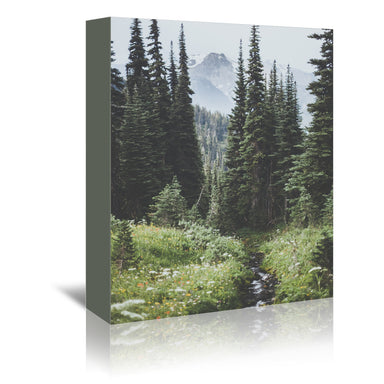 Garibaldi  Canada by Luke Gram Wrapped Canvas - Wrapped Canvas - Americanflat