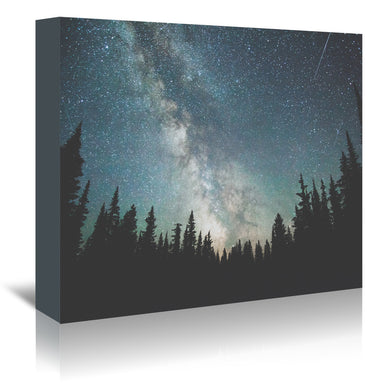Stars Over The Forest Iii by Luke Gram Wrapped Canvas - Wrapped Canvas - Americanflat