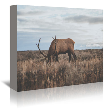 Wyoming  USA by Luke Gram Wrapped Canvas - Wrapped Canvas - Americanflat