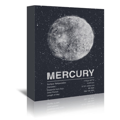 Mercury by Tracie Andrews Wrapped Canvas - Wrapped Canvas - Americanflat