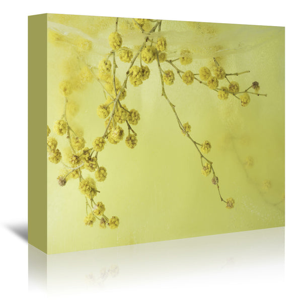 Floating In Sunshine by Zina Zinchik Wrapped Canvas