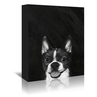Boston terrier by Laura Graves Wrapped Canvas - Wrapped Canvas - Americanflat