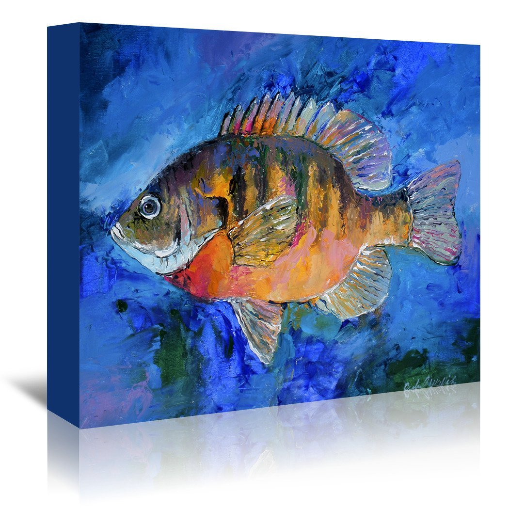 Bluegill by Richard Wallich Wrapped Canvas - Wrapped Canvas - Americanflat