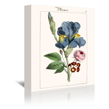 Blumen by New York Botanical Garden Wrapped Canvas - Wrapped Canvas - Americanflat