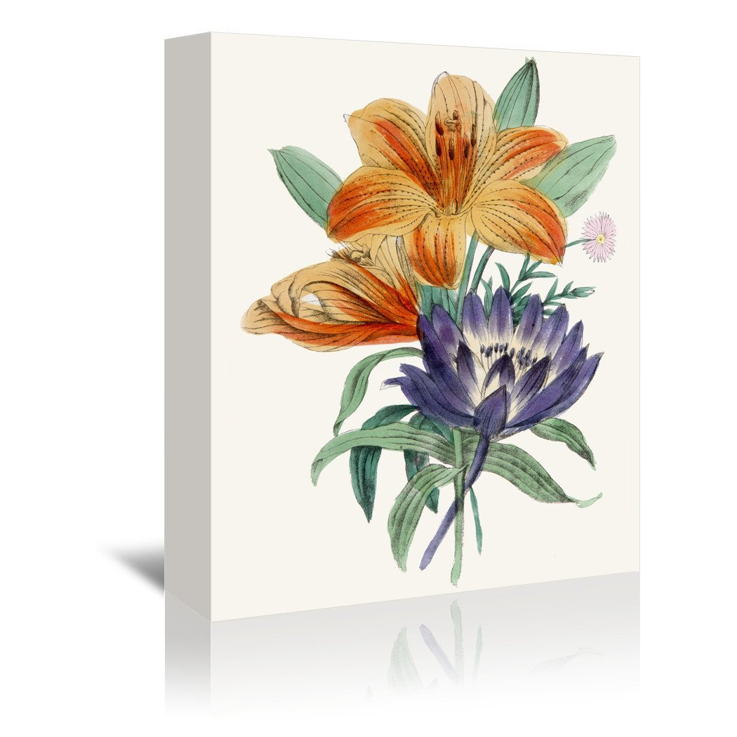 American Flora Lilium by New York Botanical Garden Wrapped Canvas - Wrapped Canvas - Americanflat