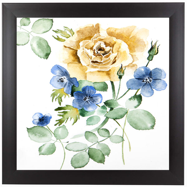 Watercolor Rose by New York Botanical Garden Framed Print