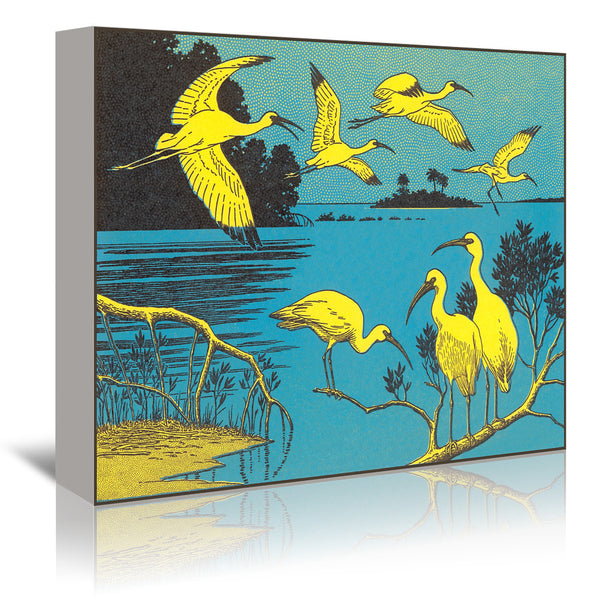 Cranes by Found Image Press Wrapped Canvas