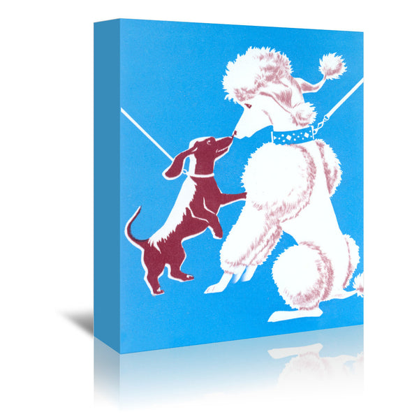 French Poodle And Dachshund by Found Image Press Wrapped Canvas