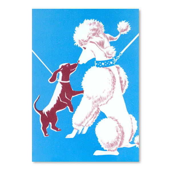 French Poodle And Dachshund by Found Image Press Art Print