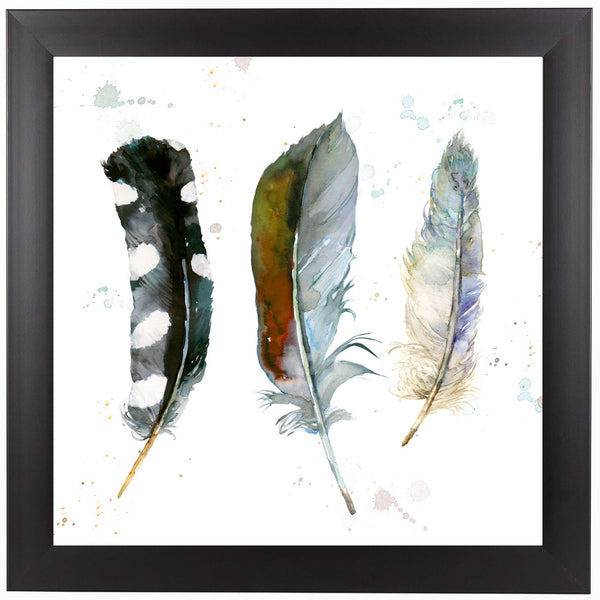Feathers 1   by Harrison Ripley Framed Print