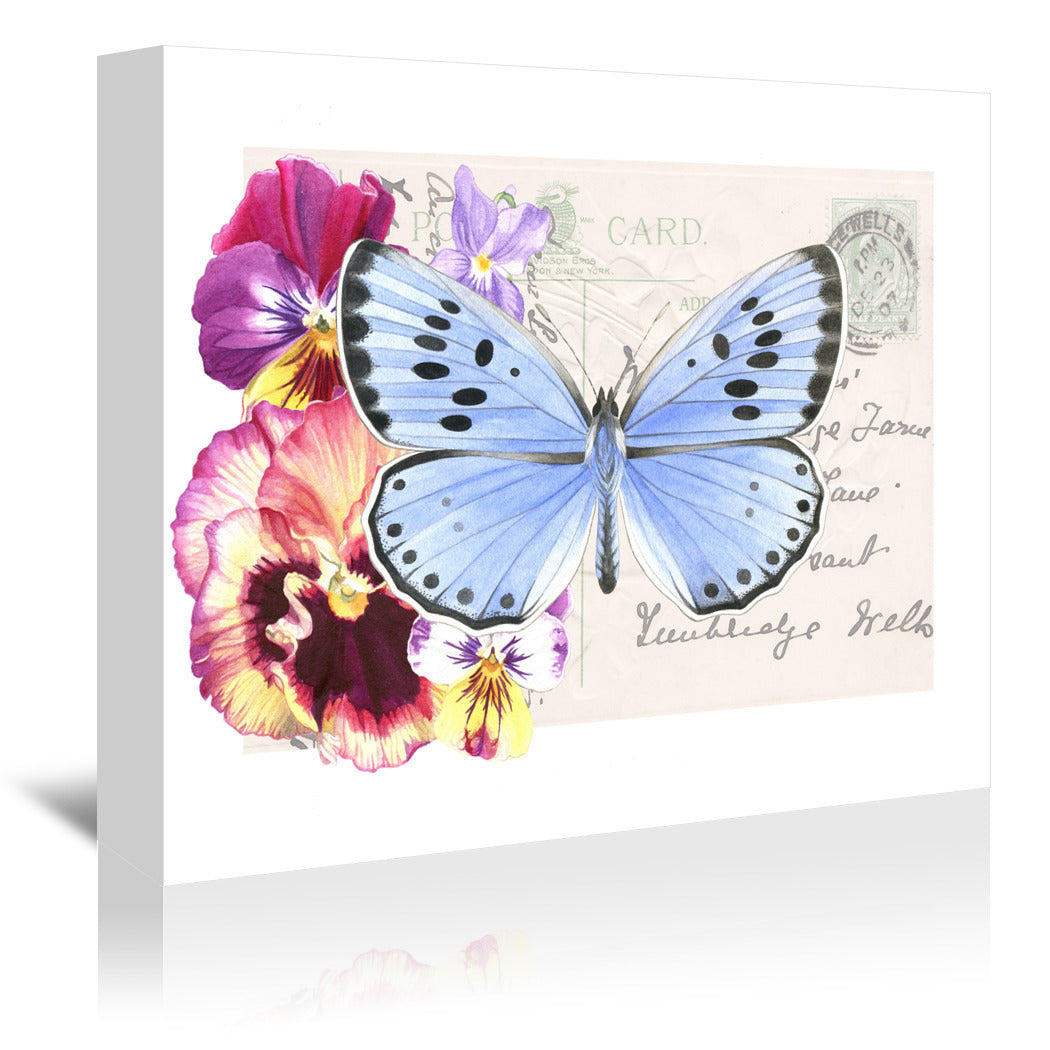 Pansy Blue Butterfly by Elizabeth Hellman Wrapped Canvas - Wrapped Canvas - Americanflat