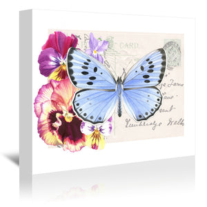 Pansy Blue Butterfly by Elizabeth Hellman Wrapped Canvas