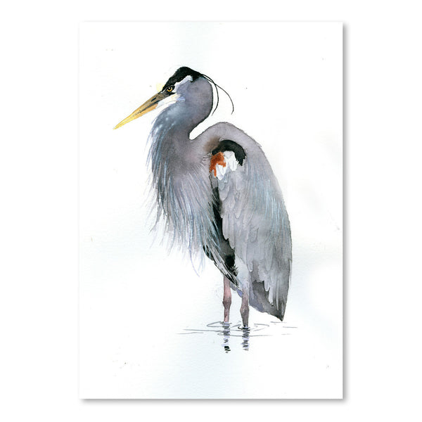 Heron by Rachel McNaughton Art Print