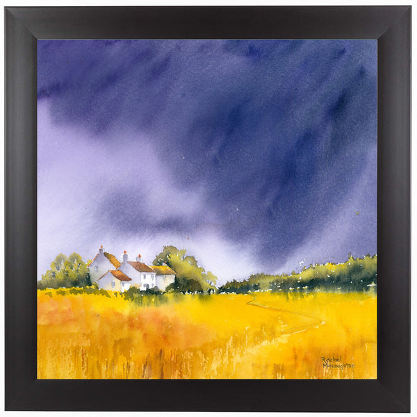 Summer Storm by Rachel McNaughton Framed Print
