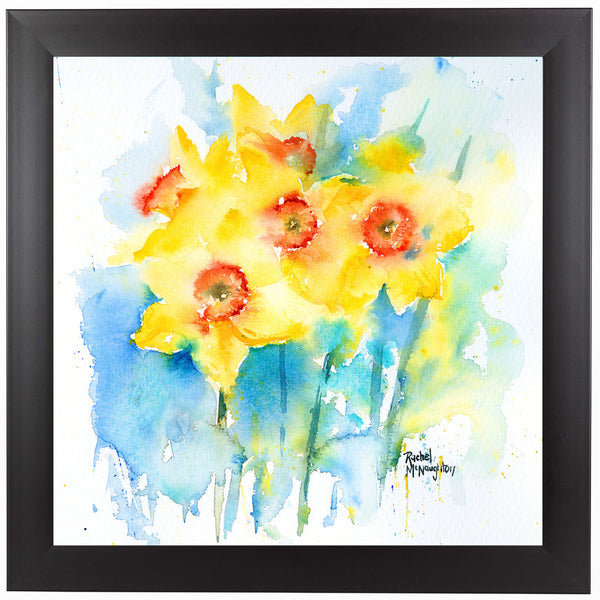 Yellow Narcissus by Rachel McNaughton Framed Print