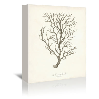 Greige Branch by Coastal Print & Design Wrapped Canvas - Wrapped Canvas - Americanflat