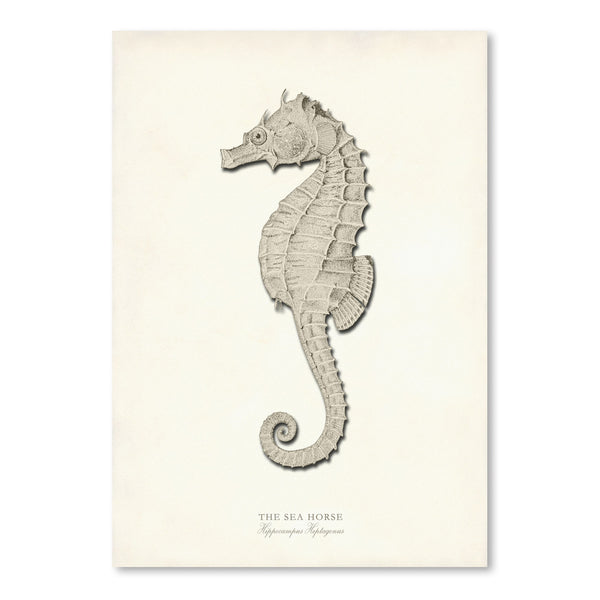 Greige Sea Horse by Coastal Print & Design Art Print