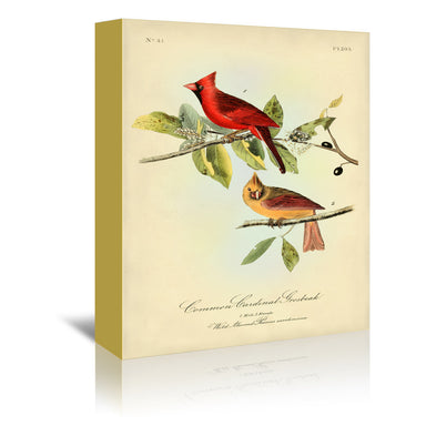Red Cardinal by Coastal Print & Design Wrapped Canvas - Wrapped Canvas - Americanflat