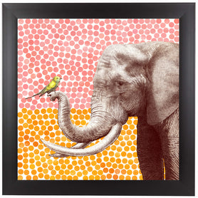 New Friends 2 by Garima Dhawan Framed Print