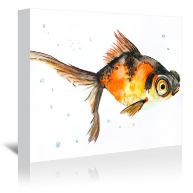Fancy Goldfish by Allison Gray Wrapped Canvas - Wrapped Canvas - Americanflat