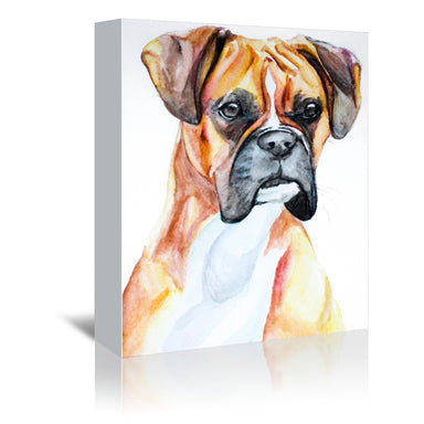 Fawn Boxer by Allison Gray Wrapped Canvas - Wrapped Canvas - Americanflat