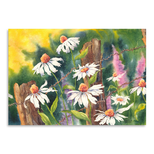 Daisy Dance by Sunshine Taylor Art Print
